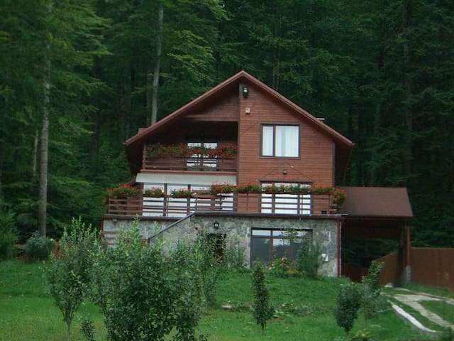Private villa in the heart of the forest - Sinaia - Hus