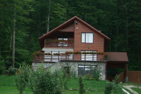 Private villa in the heart of the forest - 锡纳亚(Sinaia) - 独立屋