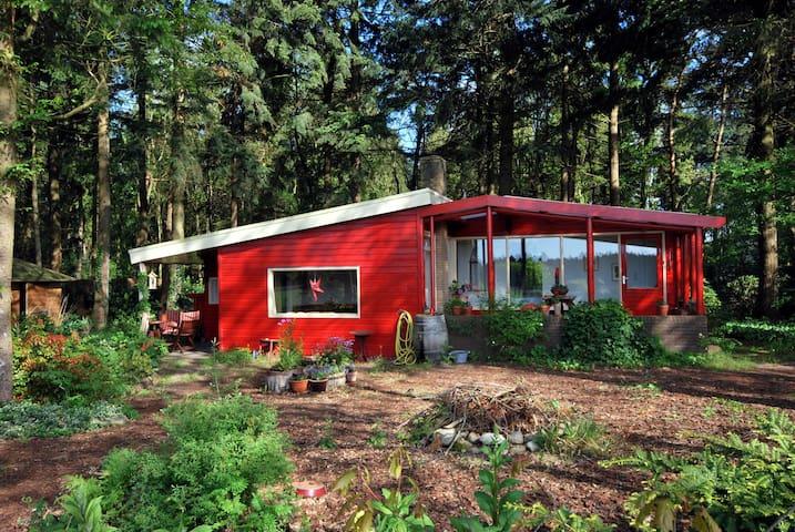 Droomhuisje op Drenths platteland - Eeserveen - Σπίτι
