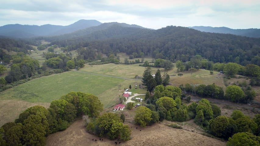 """Bunya Cottage"" Farm stay 5 minutes from Bellingen"