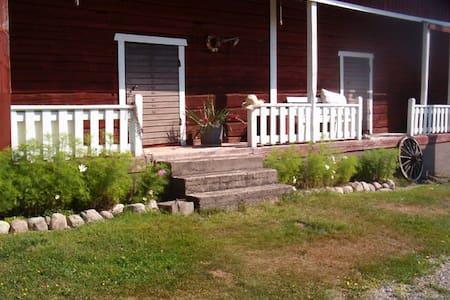 Historical granary ('aitta') in Häme countryside