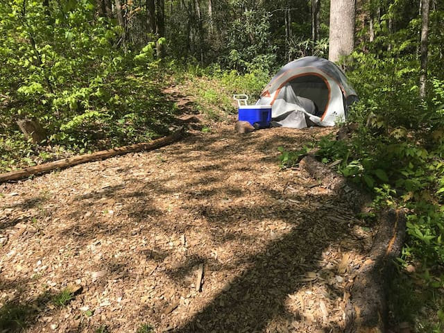 Off grid Eco Camp at Cold Mountain site #2