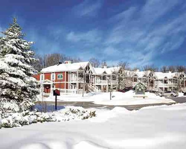 5-Star Horseshoe Valley Winter ski getaway!