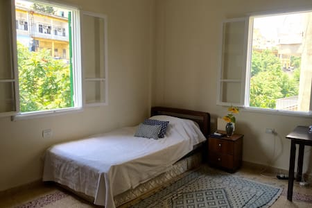 Large single room with shared terrace & cat - Beirut - Apartment