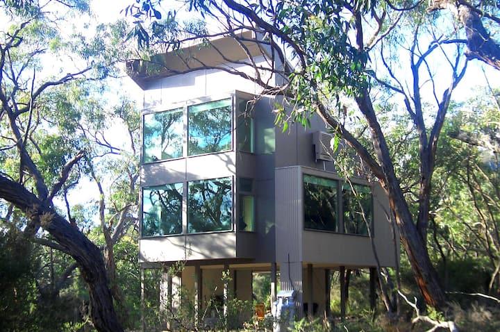 Aquila Eco Lodges - Treehouse