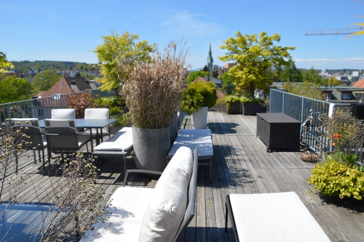 Spectacular view from the rooftop over Zurich - Zürich - Appartement