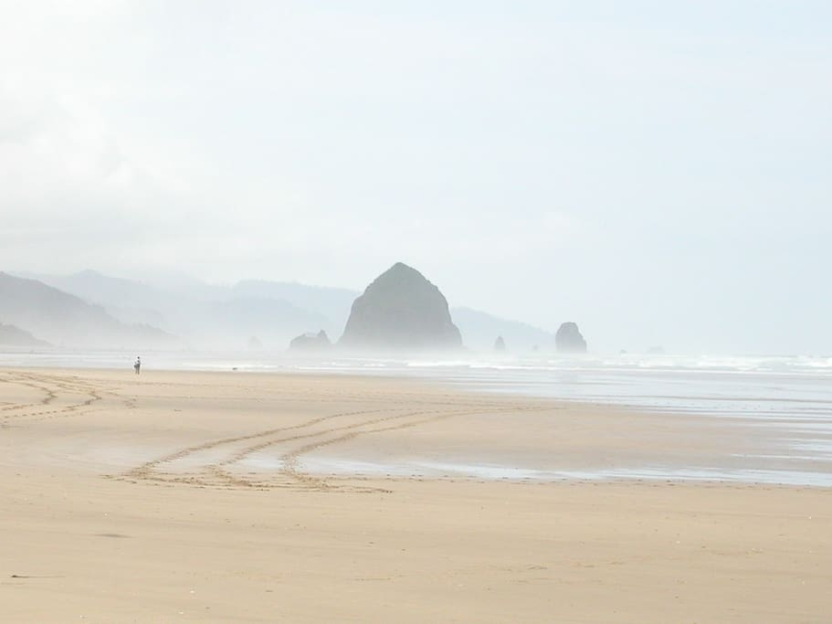Haystack Rock.  Can't see it from the house, but you can from the beach in front of the house.