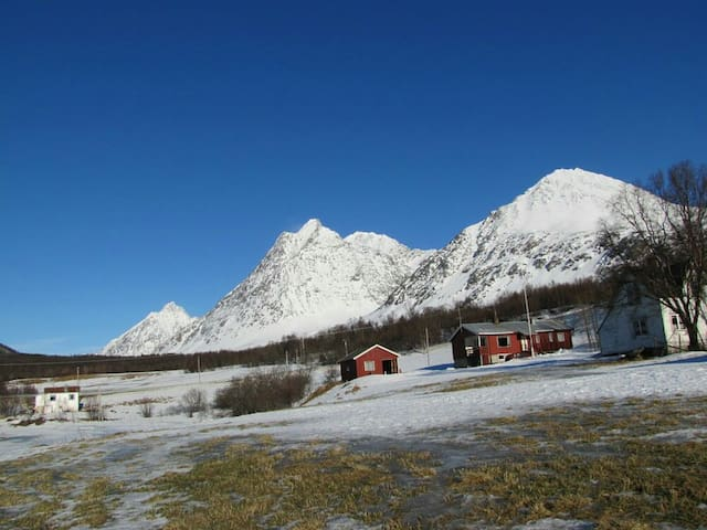 Idyllic apartment in Lyngen - Svensby