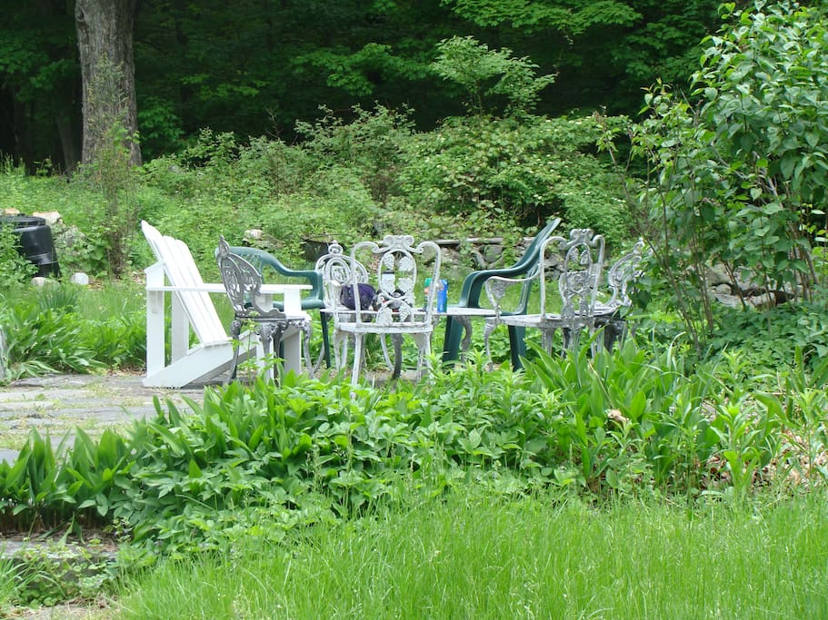 Patio.  House is on private nature preserve, hardwood forest area