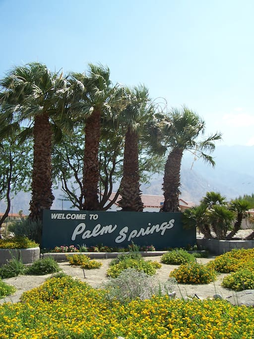 Welcome to Palm Springs.