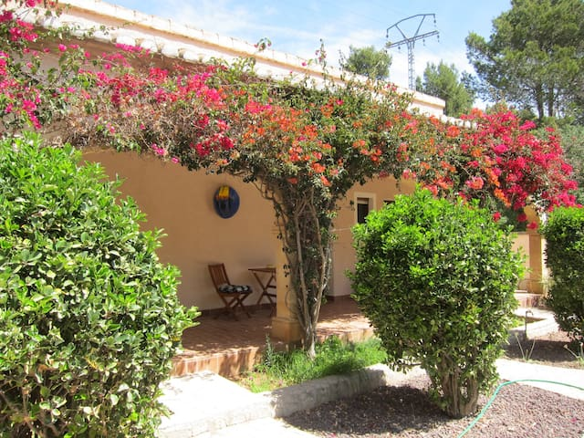 Welcome to Finca Mandarin - La Xara / Denia - Bed & Breakfast