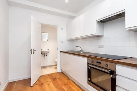 Studio flat central London zone 1