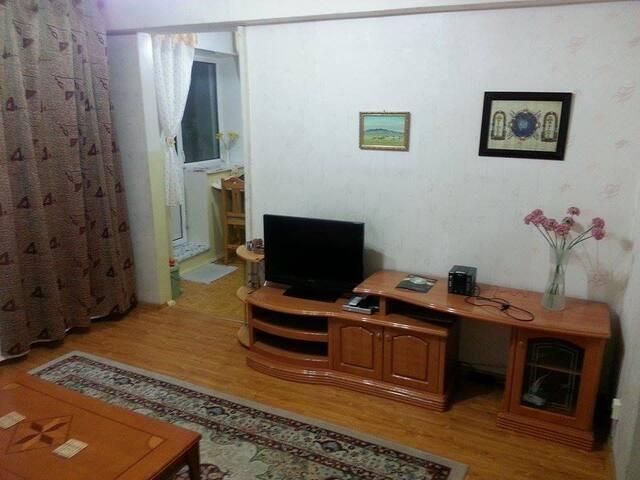 Citycenter cozy 2 room apartment - Ulaanbaatar - Appartement
