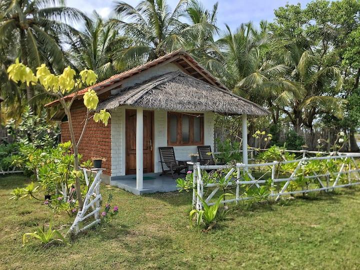 Ceylon Kite Ranch 1