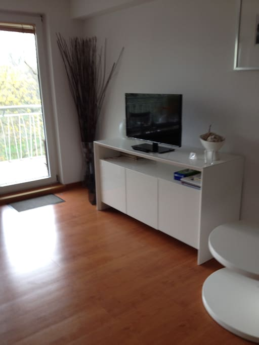 Flatscreen with HDTV and WLAN