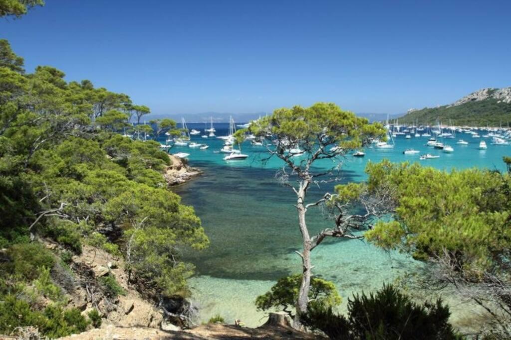 Île de Porquerolles (navette départ Sanary)