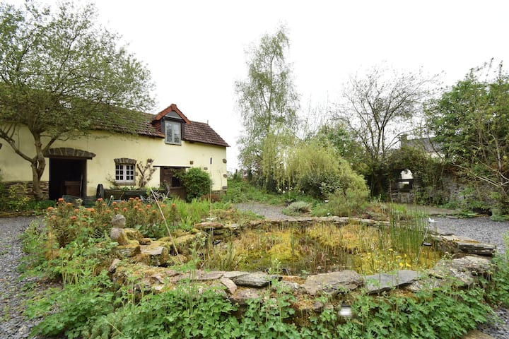 Nature lovers and peace seekers, cosy studio in wooded surroundings
