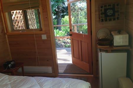 Haida Gwaii Eagle Watcher's Suite