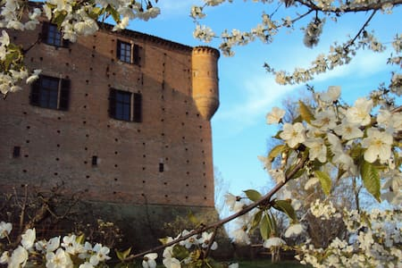 Ancient castle in Monferrato - Maranzana - Castelo