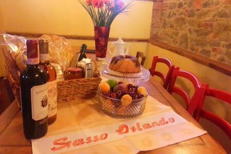 Appartamento in casa di campagna - Terranuova Bracciolini