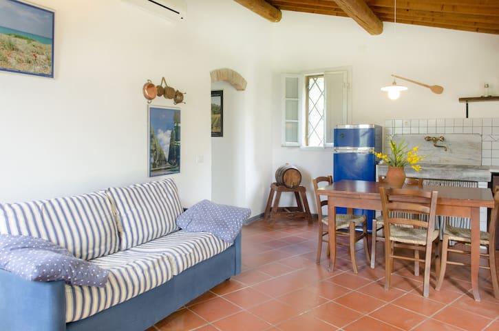 Casa Carraia - Castagneto Carducci - Hus