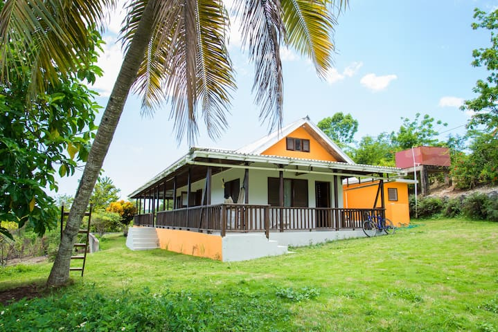 Private Home on 2 Fruited Acres  - Negril