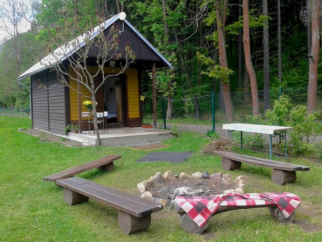 Lovely cabin by a swimming pool - Jetřichovice - Blockhütte