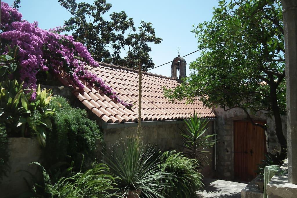 garden in front of the villa