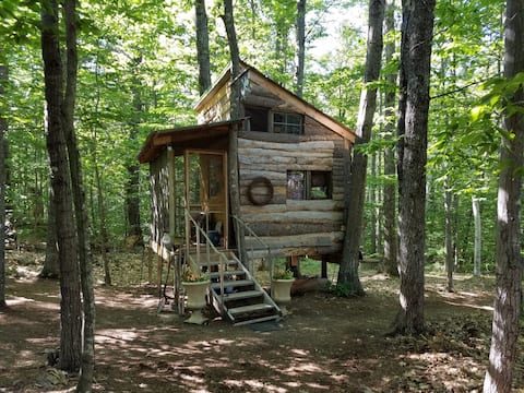 Tree House at the Shire
