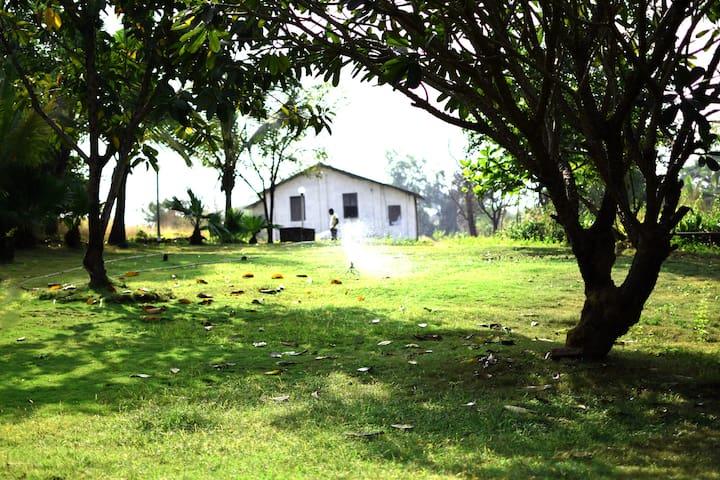 Mango Huts - 2 Bedroom Cottage near Imagica - Raigad - Bed & Breakfast