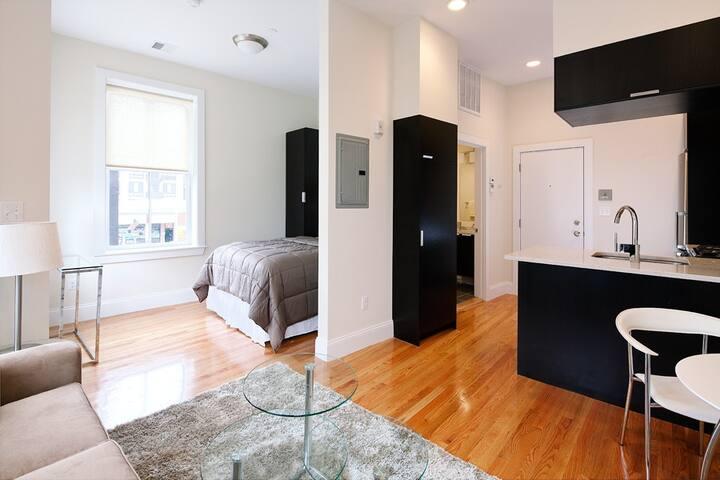 Modern Studio Apartment - South End - Boston - Apartmen