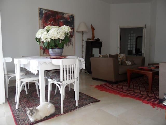 Maison d'artiste - La Goulette  - Apartment