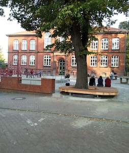 cj - Wolfsburg