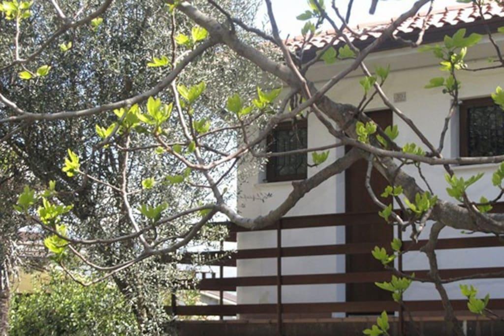 Situé dans une résidence avec piscine entourée de vert