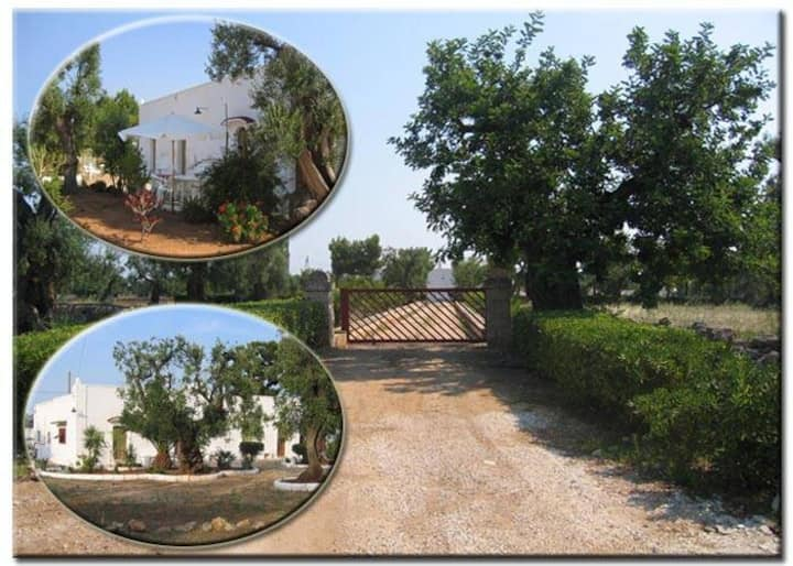 Masseria typical CountryHouse