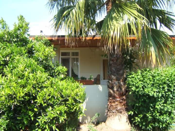 Nice Bungalow for rent Cirali