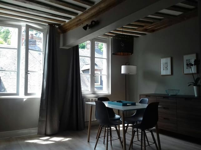 Cosy loft completely renovated -Center of Honfleur