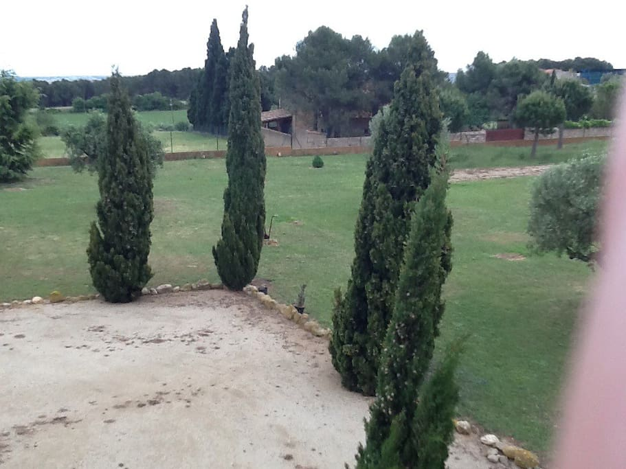 vista jardin2