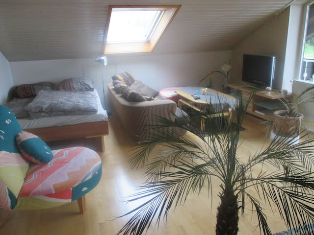 Cozy room in Schweinfurt - Dittelbrunn/Schweinfurt - House