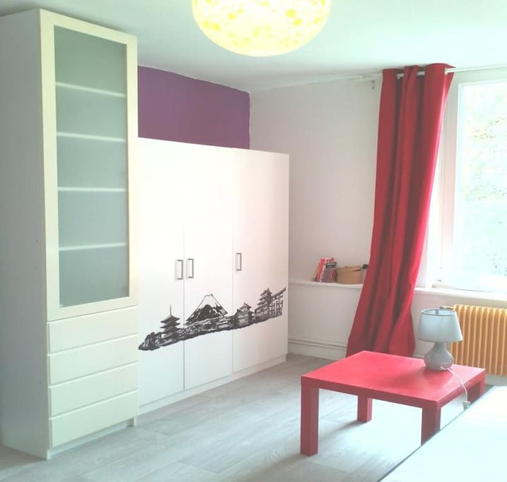 jolie chambre 12m wazemmes libre houses for rent in lille nord pas de calais france. Black Bedroom Furniture Sets. Home Design Ideas