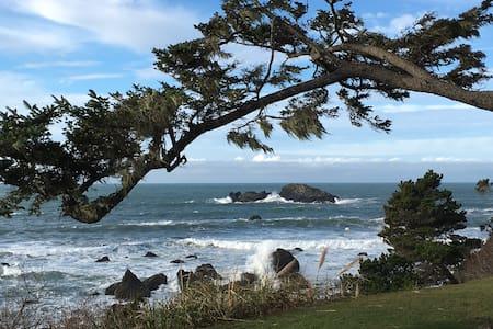 Beach, Garden, Tranquility