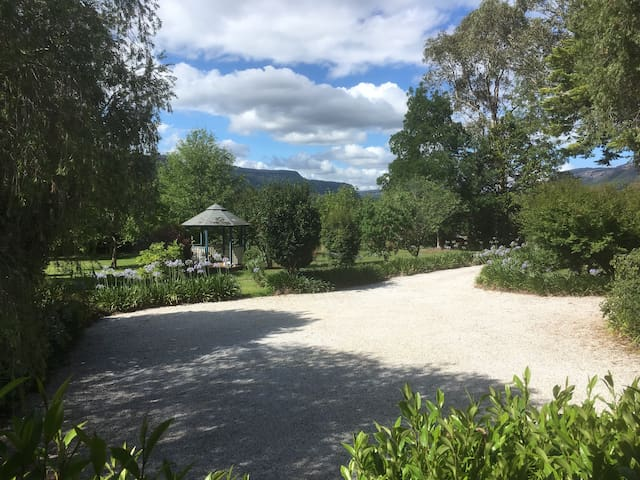 The front garden from the kitchen.