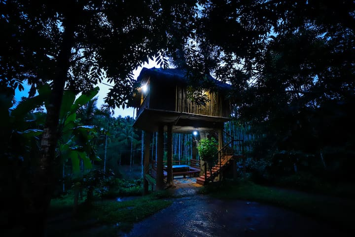 Tree House near Kabini River| Fishing, Safari