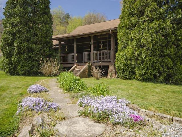 Pisgah Paradise: Charming Mountain Cabin