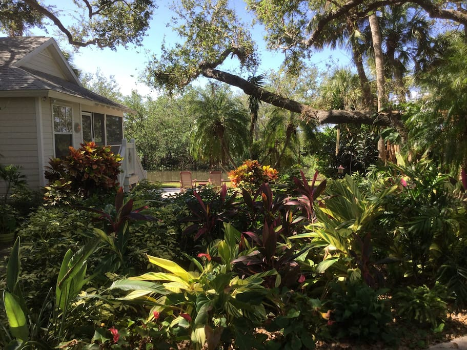 "Annie from Virginia, February, 2018......... ""What a wonderful place! The cottage is private, nestled in a stunning garden, with a beautiful jungle-like vista out back. Check in was a breeze and Marion and Pat were super quick to respond to our questions. Will be returning if we're ever vacationing in FL again!"""