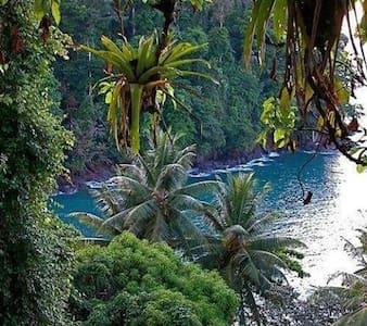 Tropical Paradise Gardens & Coastal - Pāhoa