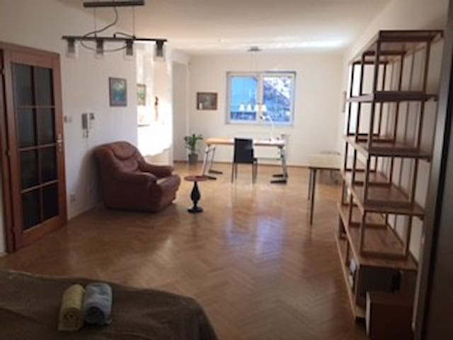 Comfortable large room south and west view for 1-2 - Prag - Hus