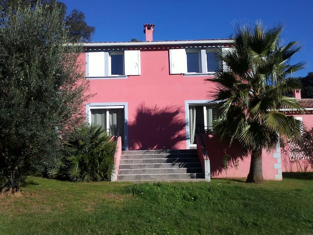 Maison de charme - Castellare-Di-Casinca - Dom