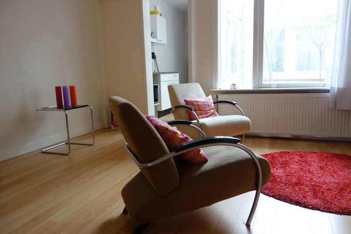 Lovely place in center of The Hague - Den Haag - Appartement