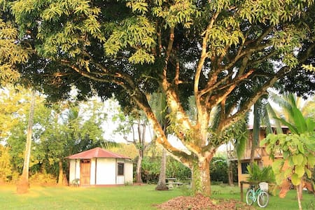 Olguita's Place - Octagonal Cabin - Punta Uva